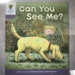 Day 26 Phonics 『qu』& 『Can You See Me?』