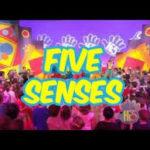 Five Senses(5つの感覚ー五感)-Hi5【英語カラオケで楽しくアウトプット!】歌詞和訳付き